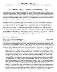 resume executive summary example sample executive summary for