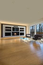 Living Room Lighting Design 36 Best Edge Lighting Living Room Images On Pinterest Modern