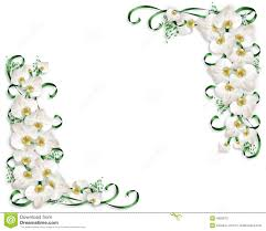 white orchids border wedding invitation stock photos image 4892973