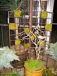 metal trellis with checkerboard moss pattern in garden eden