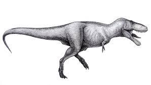 tyrannosaurus rex information and gallery