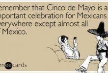 Meme Cinco De Mayo - the 12 funniest cinco de mayo internet memes ever internet memes