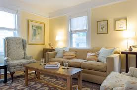 Yellow Living Room Ideas by Home Design 85 Appealing Color Combinations With Greys