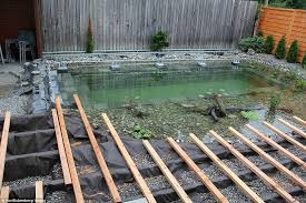 Building A Fish Pond In Your Backyard by Swiss Family Spends 34 000 And One Year Building Natural Swimming