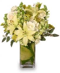 florist tulsa ok tulsa florist tulsa ok flower shop the orchid florist