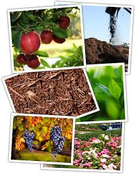 north county compost organic soil gypsum wood chips omri listed