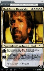 Chuck Norris Beard Meme - chuck norris invincible meme by pipo753 memedroid