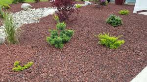 Lava Rock Garden Low Maintenance Landscaping In Ferndale Wa Lava Rock Shrubs