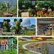 epcot flower and garden festival springs to life orlando insider