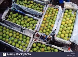 vashi market hma 85245 pears fruit packed selling in wholesale market vashi