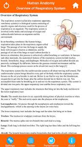 Human Anatomy Respiratory System Human Anatomy Respiratory System On The App Store