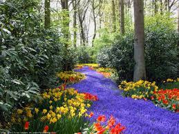 Spring Flower Garden Bing Free Spring Wallpaper Nature Springtime Free Desktop