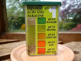 Garden Soil Types - what type of soil does my garden have paperblog