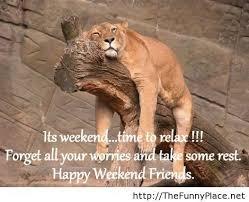 Happy Weekend Meme - happy weekend thefunnyplace