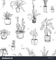 seamless pattern house plants vector sketches stock vector