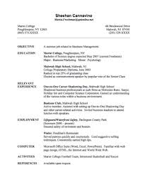 Best Things To Put On A Resume by Things To Put On A Resume