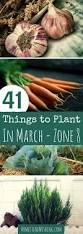 Weather Zones For Gardening - 41 things to plant in march in the garden zone 8