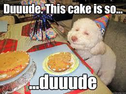 Hipster Dog Meme - image 287688 birthday dog know your meme