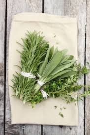 fresh rosemary thyme for thanksgiving space