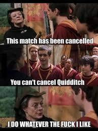 Harry Potter Trolley Meme - harry potter quidditch memes memes pics 2018