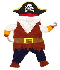 amazon idepet funny pet clothes pirate dog cat costume