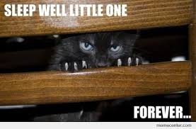 Evil Cat Meme - evil cat wishes you a good night by ben meme center