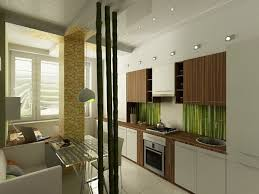 kitchen ideas for small apartment for young by tatiana