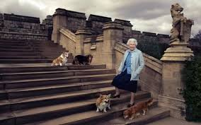 Queen Elizabeth Dogs How Corgis Became The Queen U0027s Surest Companions