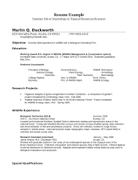 Resume Template Internship Sample Resume Paraprofessional Fresh Graduate Resume Sample