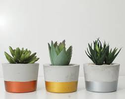 round planter concrete planter small planters air plant