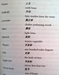 all booked up book 5 review a concise chinese english dictionary