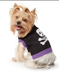 halloween dog mask matching owner and dog costumes for a pet rifyingly cute halloween