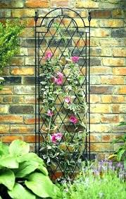 Ideas For Metal Garden Trellis Design Iron Garden Trellis Getanyjob Co