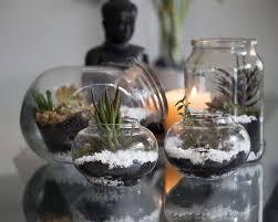 making a small plant terrarium 20 inspiring ideas for successful