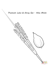 lulav and etrog coloring page free printable coloring pages