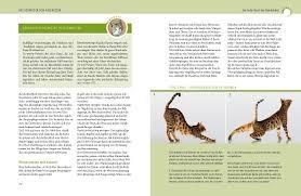 Sch E G Stige K Hen Was Katzen Wirklich Wollen Gu Tier Spezial Amazon De Mircea