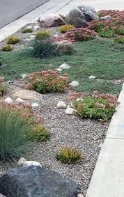 Small Rock Gardens by Best 25 Large Landscaping Rocks Ideas On Pinterest Boulder