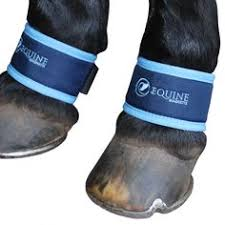 equilibrium therapy massage pad magnetic horse therapy