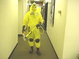 Sully Halloween Costume Adults Diy Monster U0027s Cda Costumes Cheap Yellow Backpacks