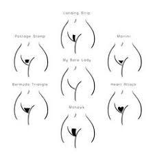 male pubic hair trends bikini wax menu esti waxing pinterest cosmetology ingrown
