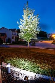 Affordable Landscape Lighting 24 Best Led Landscape Lighting Images On Pinterest Landscape