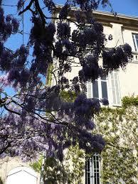 chambre d hote lancon de provence chambres d hôtes maison auguste chambres d hôtes salon de provence