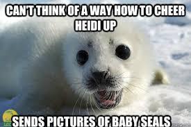Baby Seal Meme - heidi memes funny memes best of the funny meme