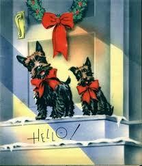 210 best scottie images on scottie dogs