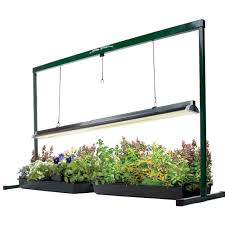 light requirements for growing tomatoes indoors how to select the best grow light for indoor growing urban organic