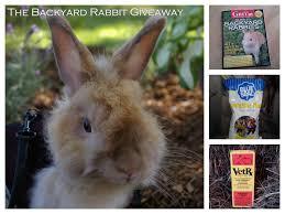 a backyard rabbit giveaway 1840farm com