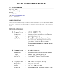 Computer Operator Resume Sample by Sample Resume Computer Operator Fresher Sales Operator