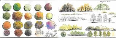 drawings bathroom landscape landscape architecture tree sketches