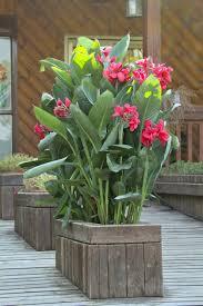 Cheap Patio Pots Large Garden Pots Cheap Home Outdoor Decoration