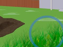 Coffee Grounds In Vegetable Garden by 4 Ways To Prepare Soil For A Garden Wikihow